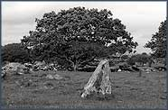Unclassified standing stone near Pentre Ifan